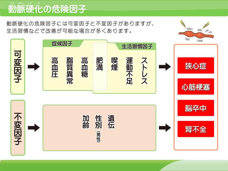 【図】動脈硬化の危険因子